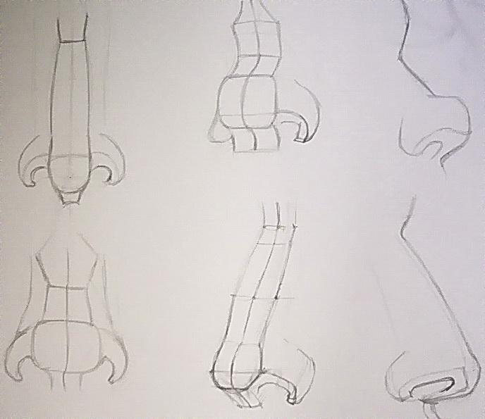 14-Схема построения носа